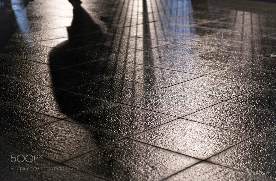 Photograph Where shadows go by Olga Bekker on 500px