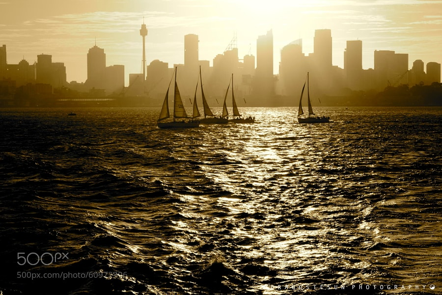 Photograph Sydney Harbour by Dragostesun Photography on 500px