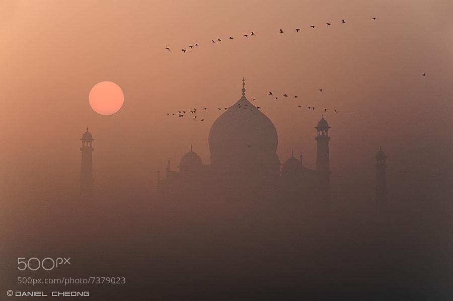 Photograph Misty Taj by Daniel Cheong on 500px