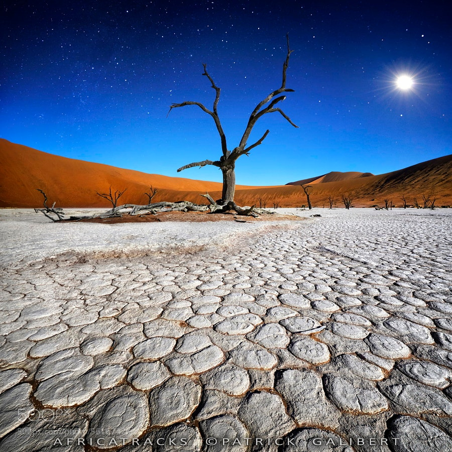 Photograph Stars in Dead Vlei by Patrick Galibert on 500px