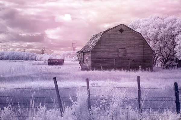 infrared image with post processing added.