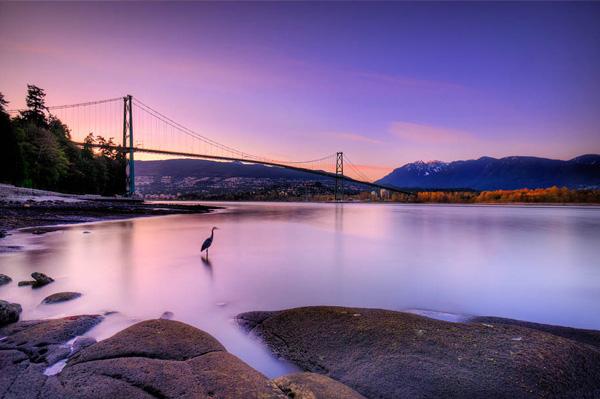 Lions Gate Bridge Vancouver - HDR image