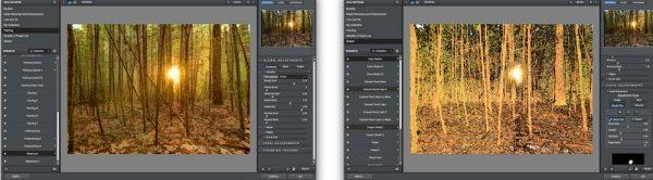 TopazSimplify-Forest2