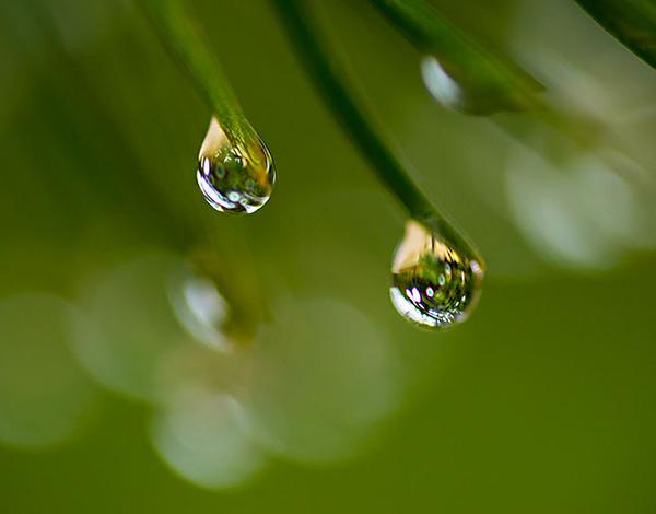 badweatherphotography-raindrops
