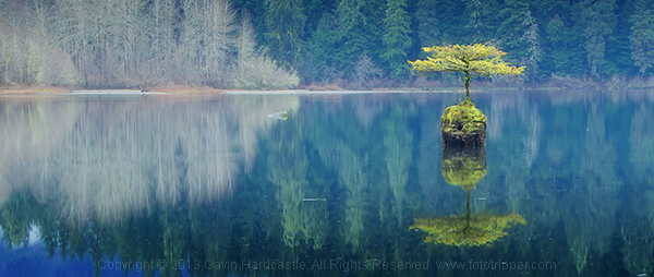 gavin-hardcastle-fairy-lake-port-renfrew-vancouver-island-crop