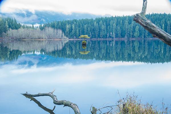 gavin-hardcastle-fairy-lake-port-renfrew-vancouver-island-full