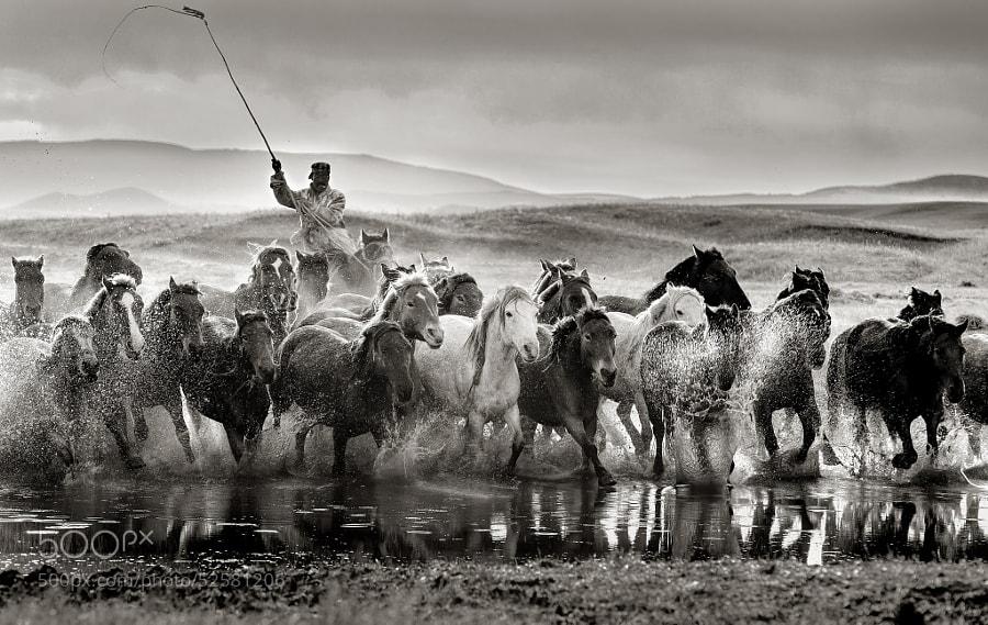 Photograph Go, go by Edwin Leung on 500px