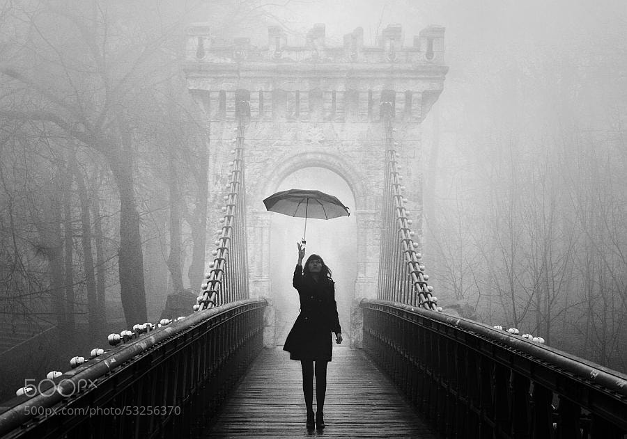 Photograph a monochrome end of fall by felicia simion on 500px