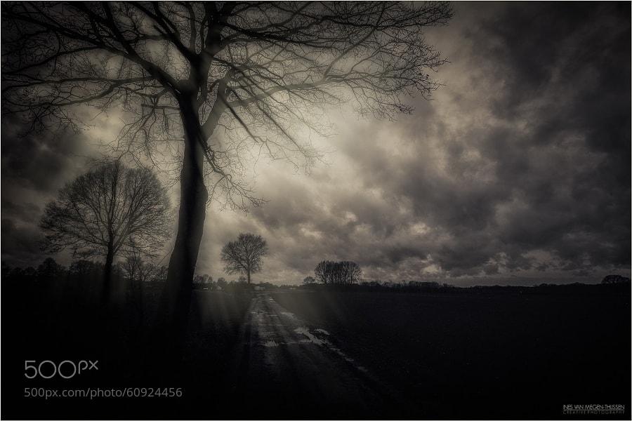Photograph Angel....please give me your light... by Ines van Megen-Thijssen on 500px