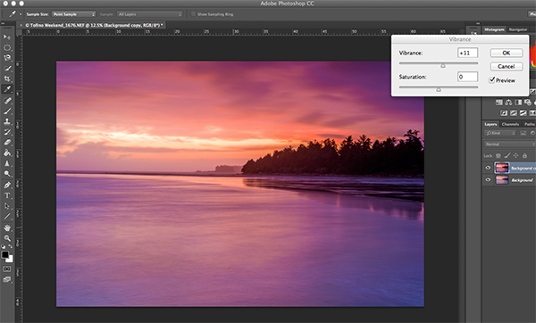 The final step, boosting the vibrance to get that extra pop in the image