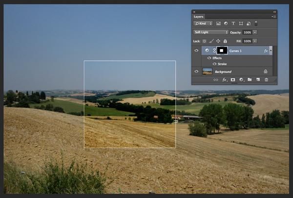 Field in France curves softlight