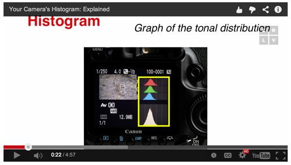 The Camera Histogram Explained