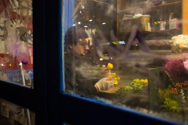 Bodega Flower Worker, 2012