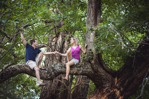 Engaged couple in a tree