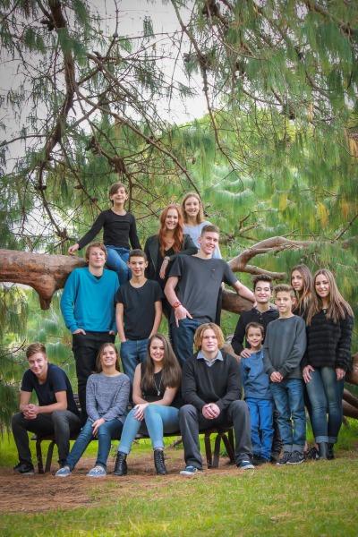 Image F- group tiered on tree