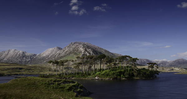 Picture1-Connemara1