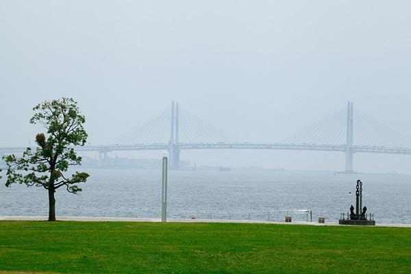 Yokohamabridge