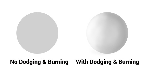 Dodging & Burning adds dimension.