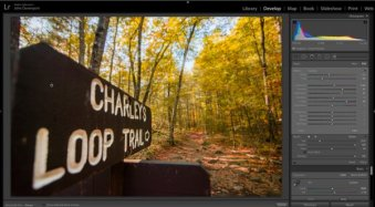 Fake Perfect Fall Colors Using the HSL Tab in Lightroom