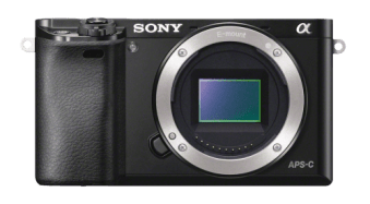 DSLR vs Mirrorless: Guide to help you decide which is right for you?