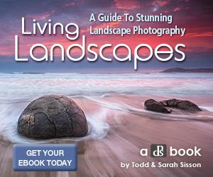 Livinglandscapes 300x250