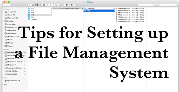 Tips for Setting up a File Management System