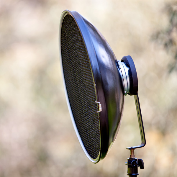 beauty dish with a grid spot