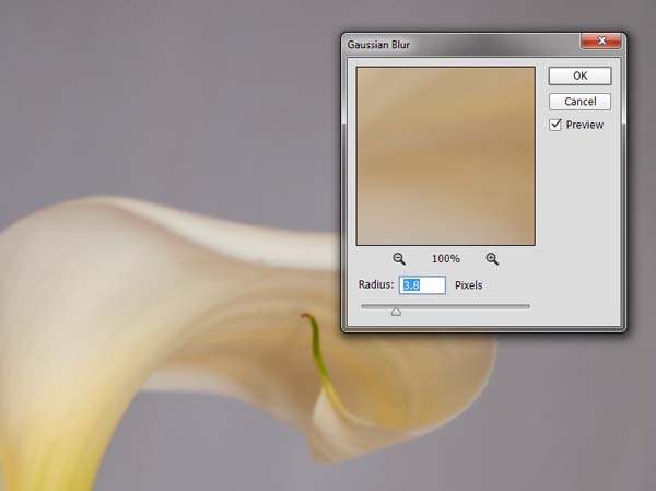 10-lily-texture-original