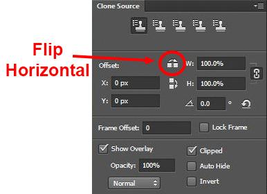 Clone Stamp Tool - Flip Horizontal setting