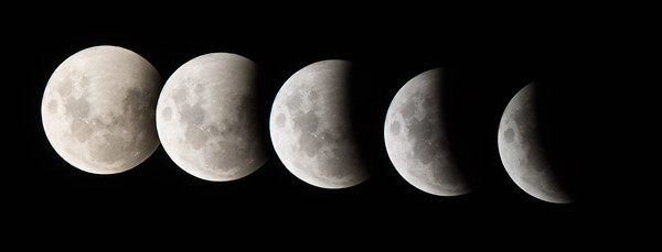 Lunar Eclipse Partial Phases Composite Canon 1100D, 300mm lens with 1.4x teleconverter, 1/125 sec, f5.6, ISO200