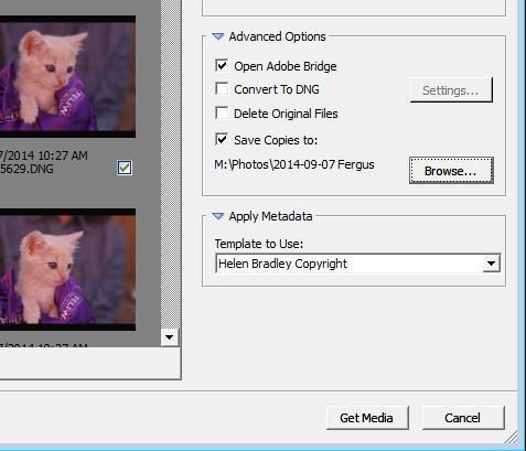 import-photos-using-bridge-6