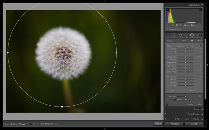 Lightroom 6 graduated radial filter adjustments