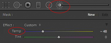 Adjustment brush and tint controls in Basic panel of Lightroom's develop module