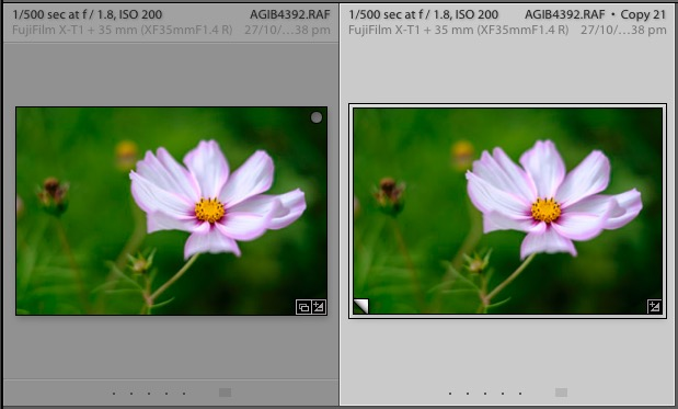 Virtual Copies in Lightroom