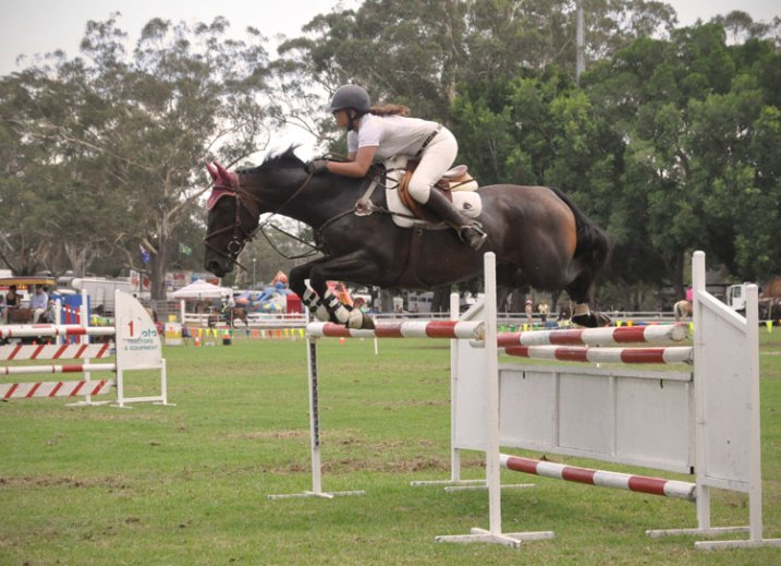 Equine-photography-7b
