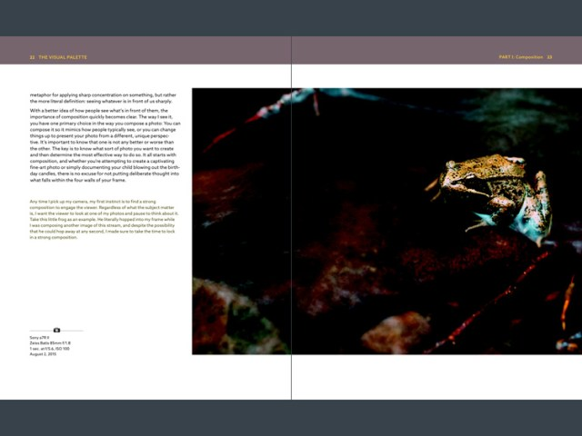This is a screenshot from Goodreader, which can display two pages together, as the designer intended them to be seen. Great – now you can see the entire photo. But that's not much use when the photo is too dark to see properly.