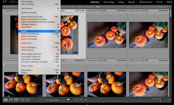 How to Save Images Using Export in Lightroom