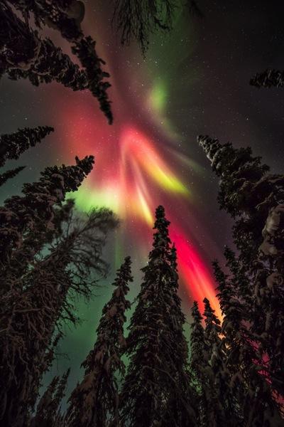 AK FAI aurora 112073 17