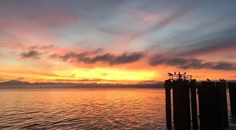 Can the Skyfire App Predict Stunning Sunset Colors Days in Advance?