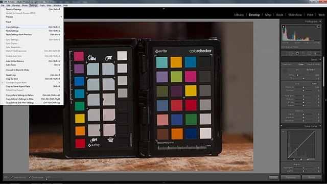 how-to-use-a-grey-card-lightroom-2