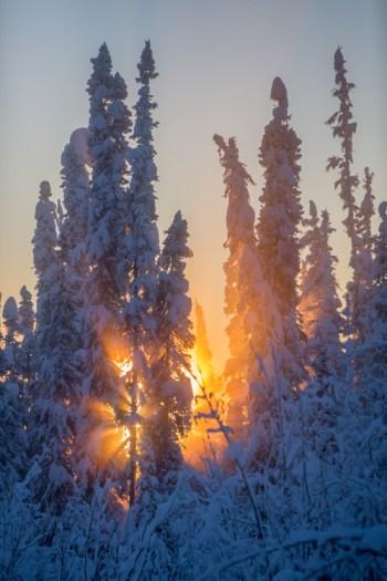 AK-FAI-Winter-sun-112172-17