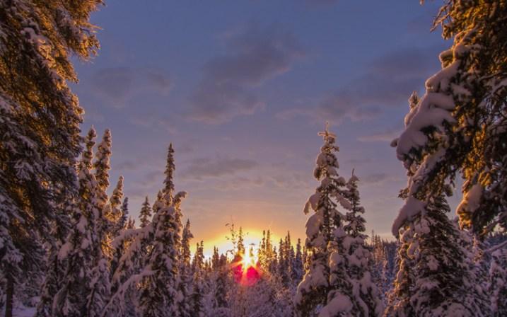 Mid-day, mid-winter, Alaska light. It just doesn't get any better.