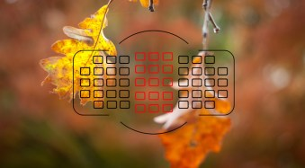 Understanding Normal and Cross-Type Focusing Points