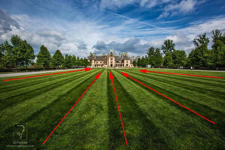 04 Leading Lines Composition Techniques Landscape Photography by Prathap Biltmore Estate Closeup
