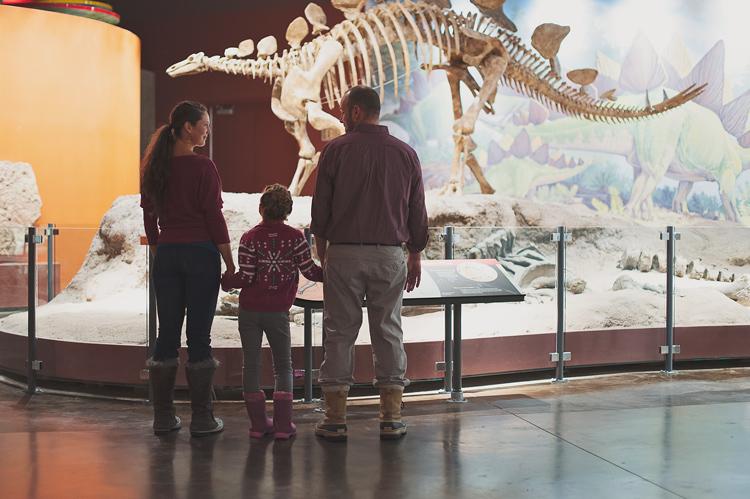 family looking at a dinosaur