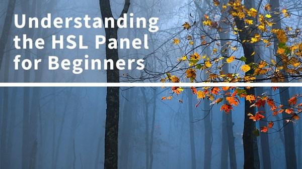 Understanding the HSL Panel in Lightroom for Beginners