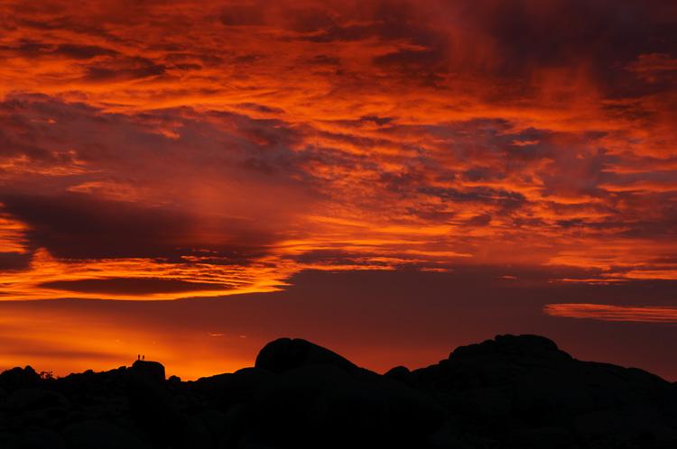 Sunset at Joshua Tree National Park, California