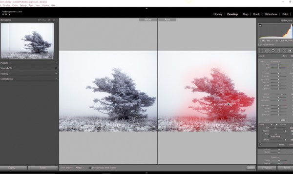 How to Make Your Photos Shine Using Clarity, Sharpening, and Dehaze in Lightroom
