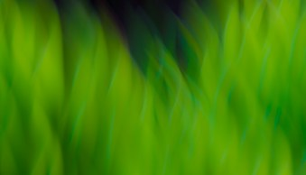 6 Tips on How to Create Abstract Photos