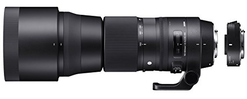 Review of the Sigma 150-600mm Contemporary Lens Plus TC-1401 Teleconverter Bundle